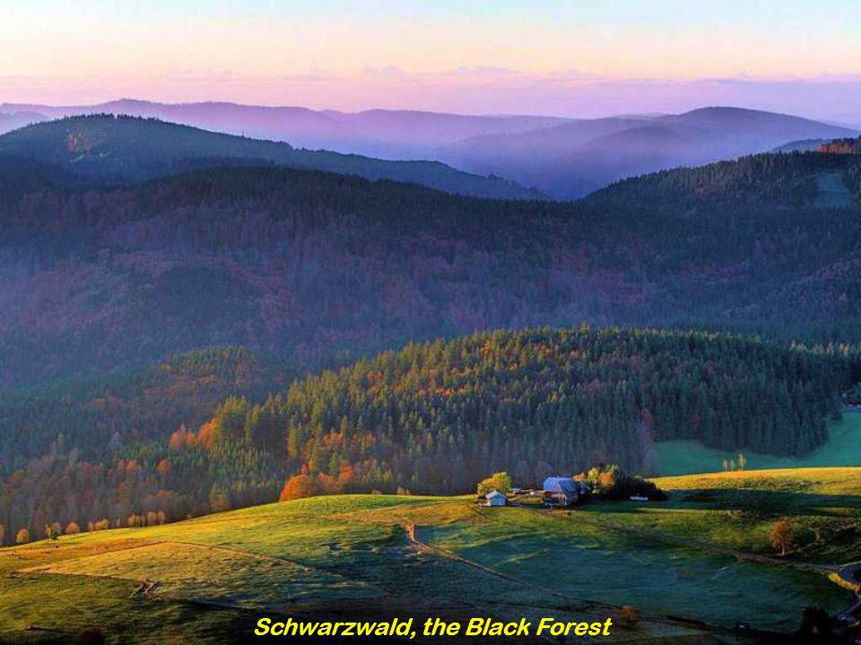 Schwarzwald, the Black Forest