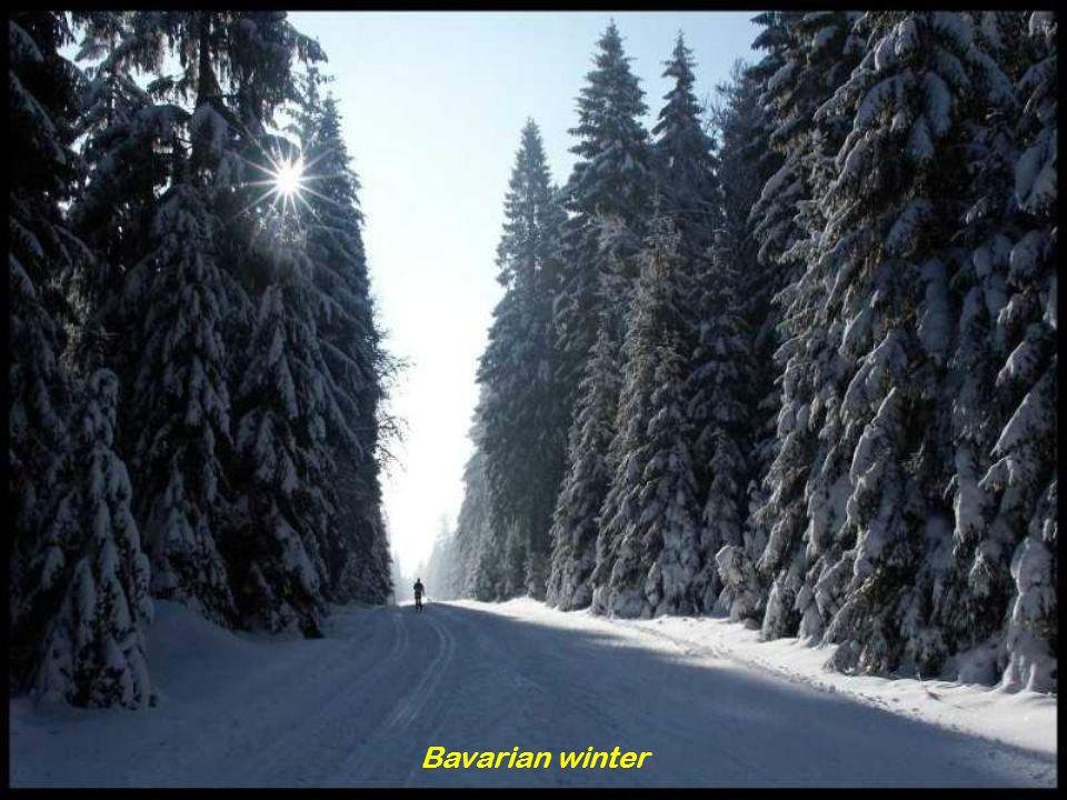 Bavarian winter
