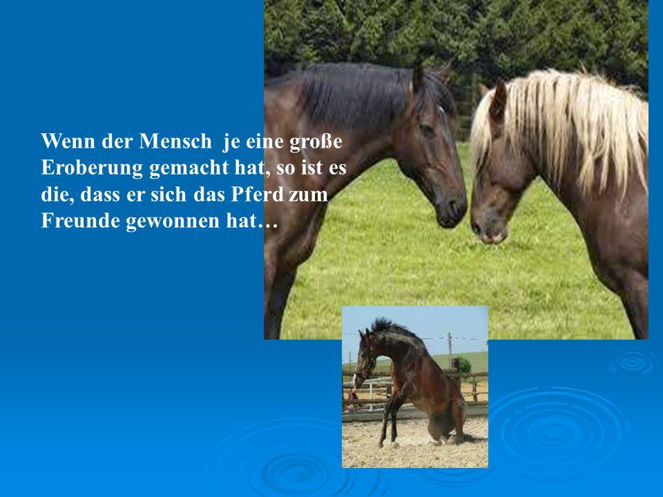 Wenn der Mensch je eine große Eroberung gemacht hat, so ist es die, dass er sich das Pferd zum Freunde gewonnen hat…
