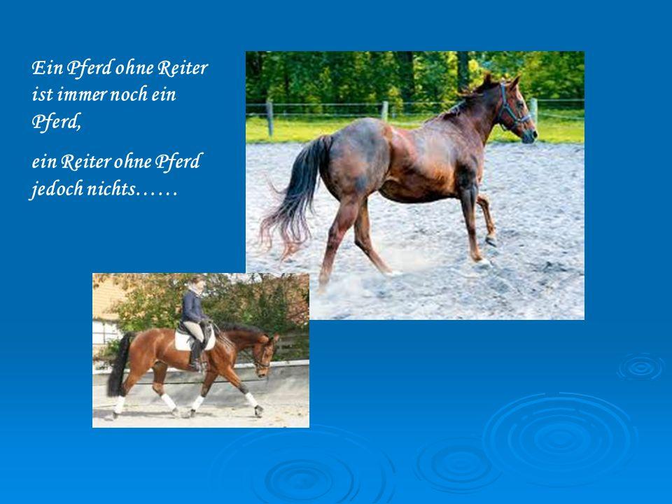 Ein Pferd ohne Reiter ist immer noch ein Pferd,