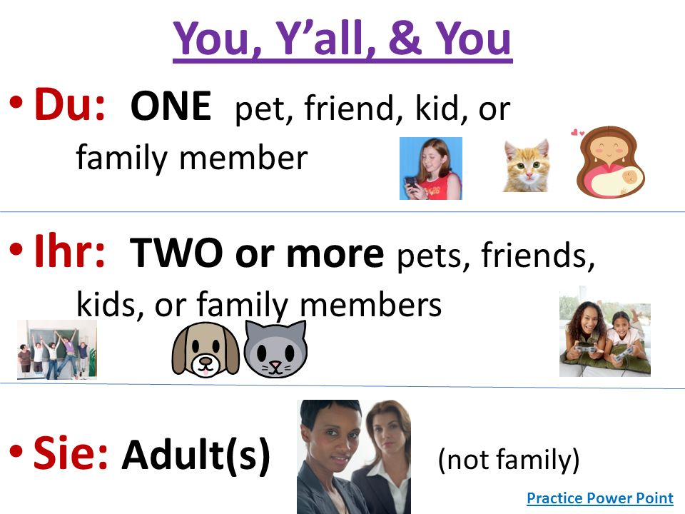 Du: ONE pet, friend, kid, or family member