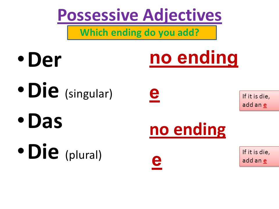Possessive Adjectives Which ending do you add