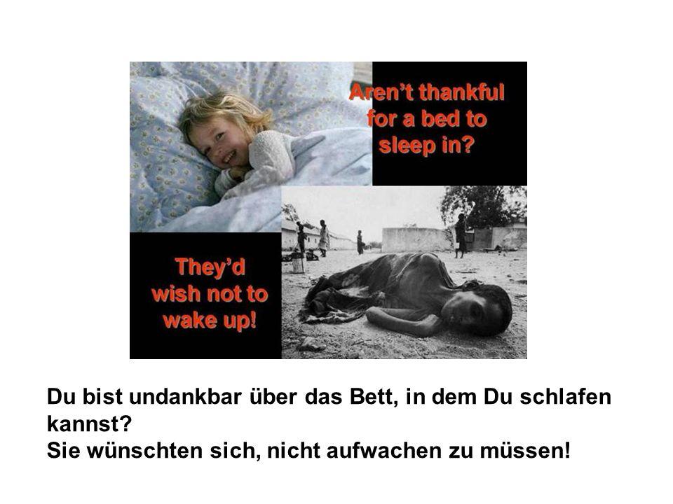 Sie wünschten sich, nicht aufwachen zu müssen!
