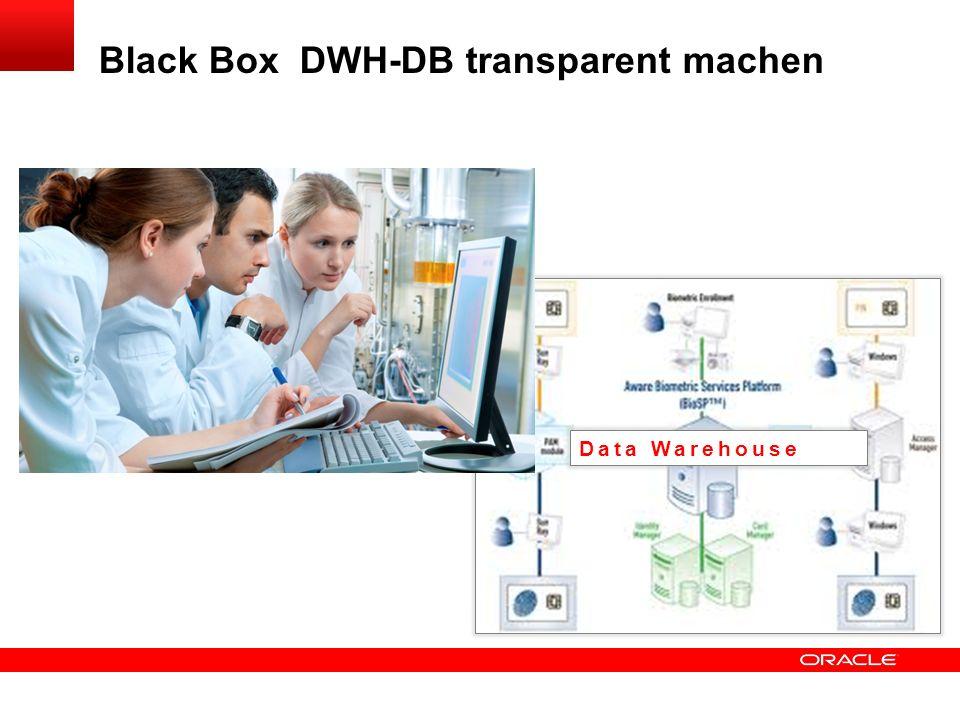 Black Box DWH-DB transparent machen