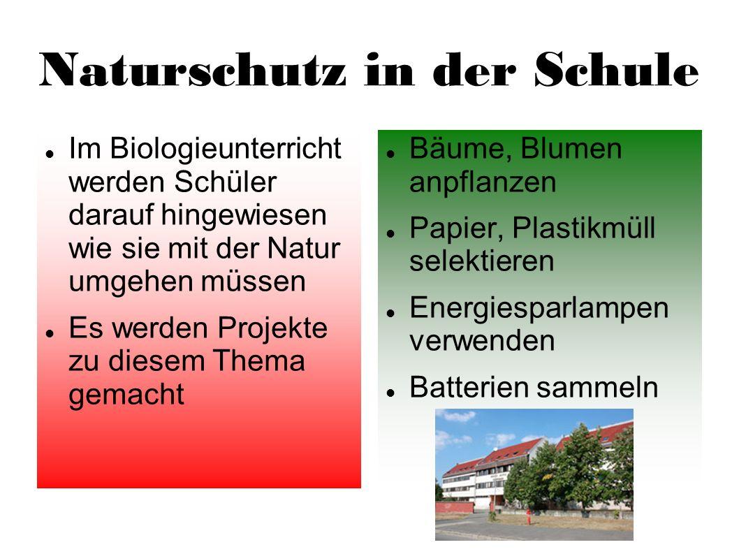 Naturschutz in der Schule