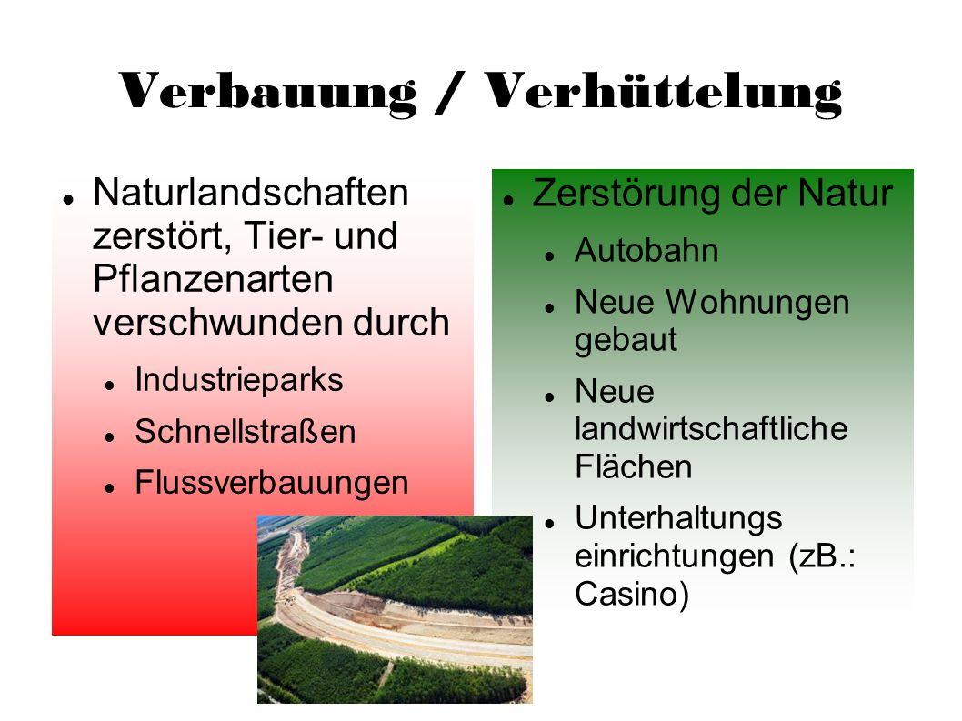 Verbauung / Verhüttelung