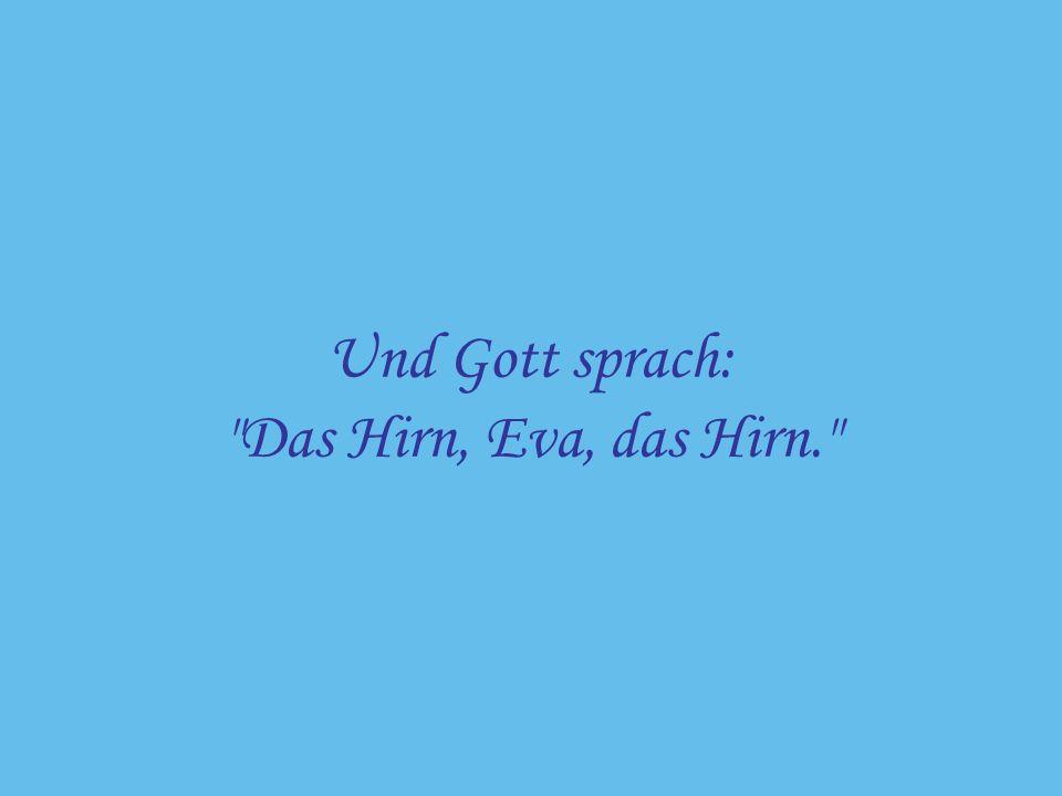 Und Gott sprach: Das Hirn, Eva, das Hirn.