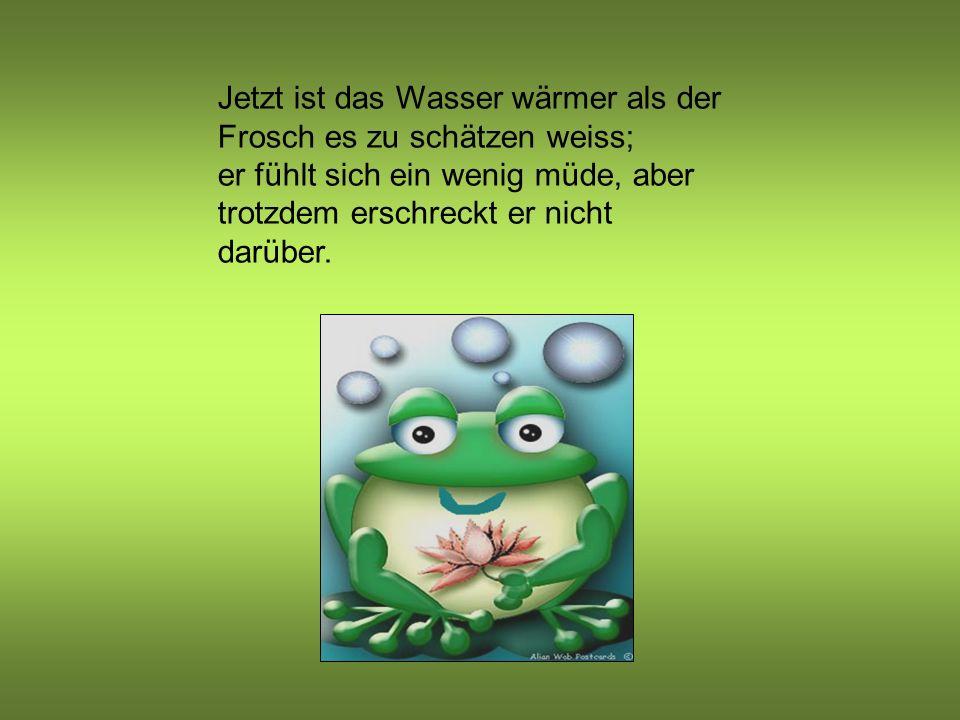 Jetzt ist das Wasser wärmer als der Frosch es zu schätzen weiss; er fühlt sich ein wenig müde, aber trotzdem erschreckt er nicht darüber.