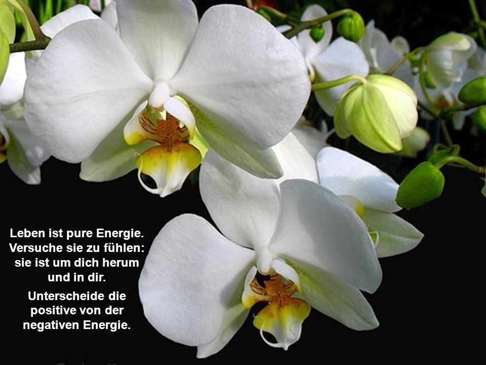 Unterscheide die positive von der negativen Energie.