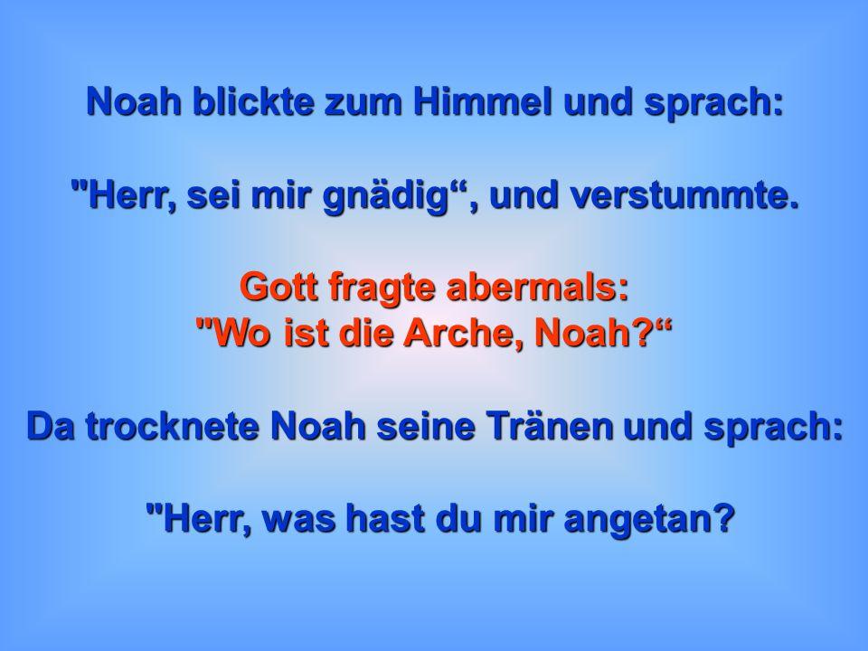Noah blickte zum Himmel und sprach:
