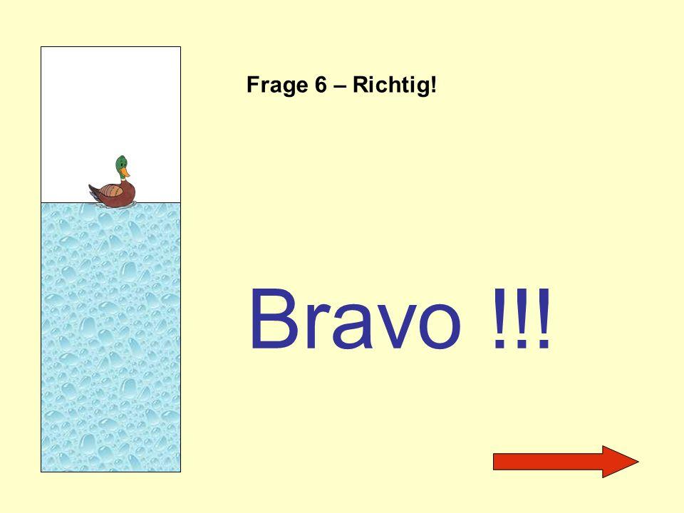 Frage 6 – Richtig! Bravo !!!