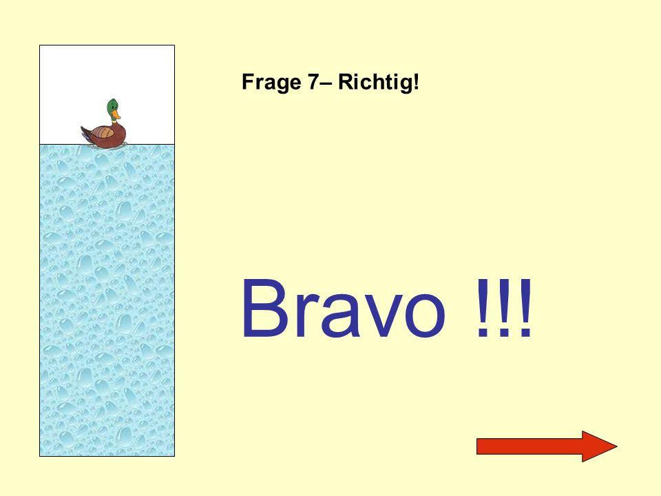 Frage 7– Richtig! Bravo !!!
