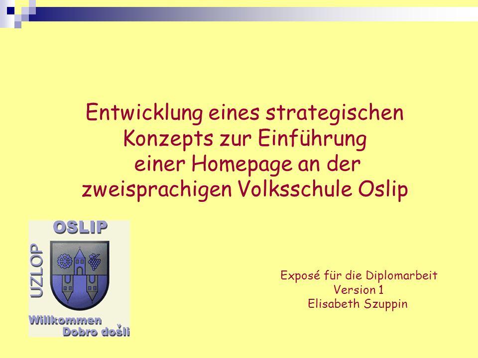 Entwicklung eines strategischen Konzepts zur Einführung