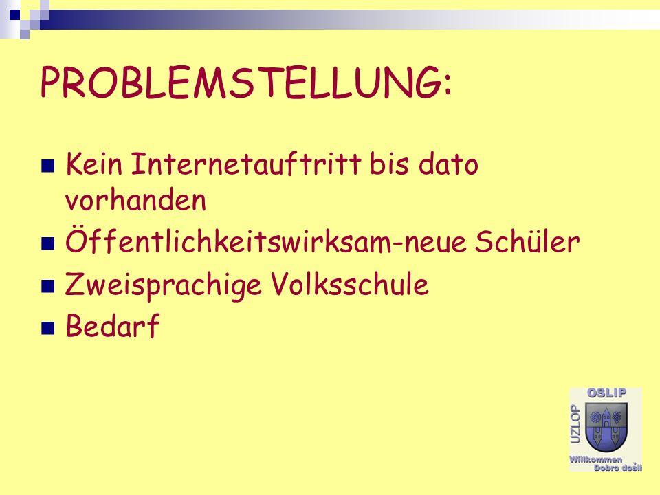 PROBLEMSTELLUNG: Kein Internetauftritt bis dato vorhanden