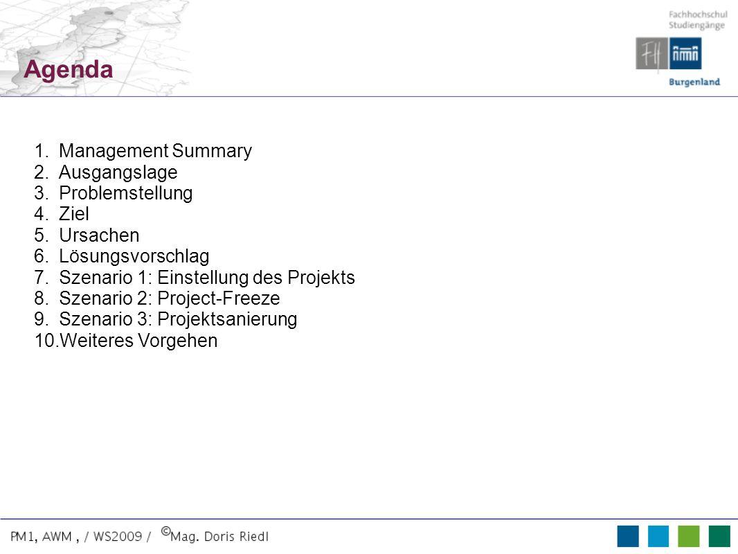 Agenda Management Summary Ausgangslage Problemstellung Ziel Ursachen
