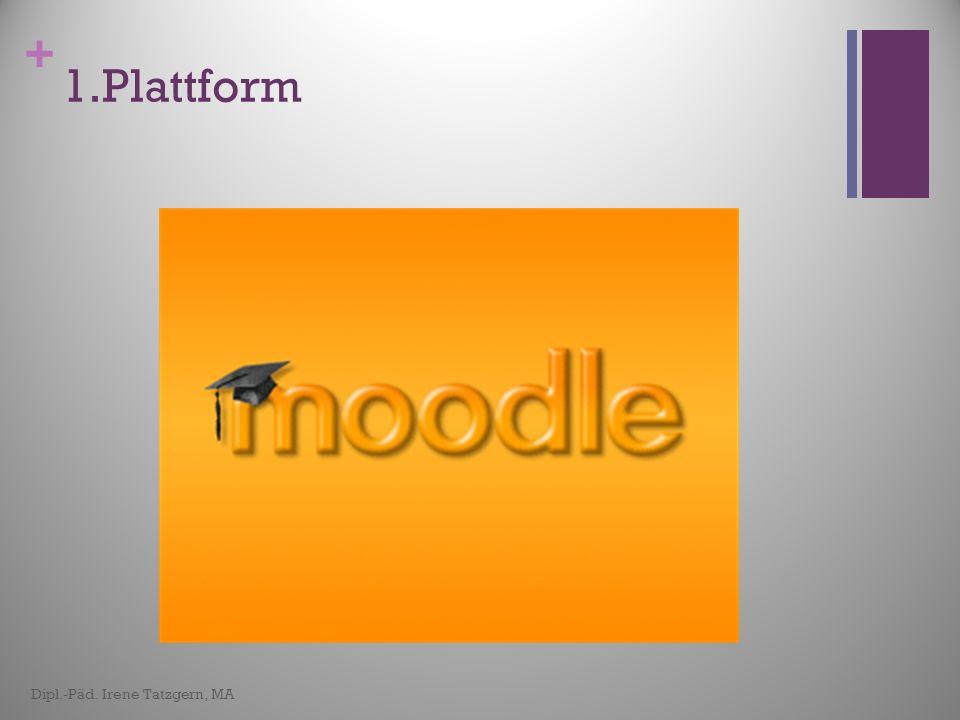 1.Plattform Dipl.-Päd. Irene Tatzgern, MA