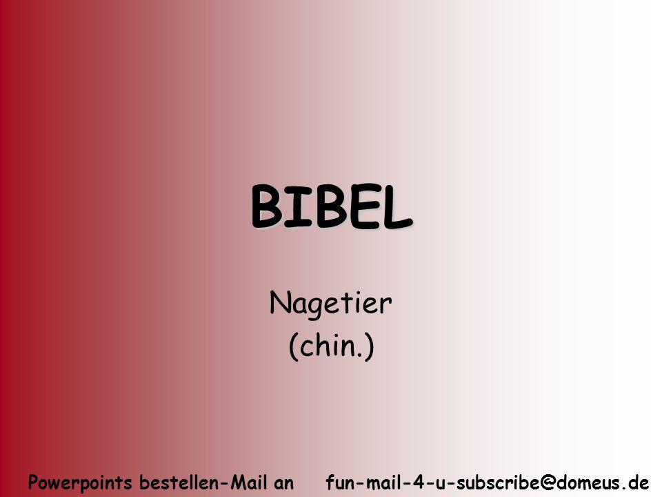 BIBEL Nagetier (chin.)