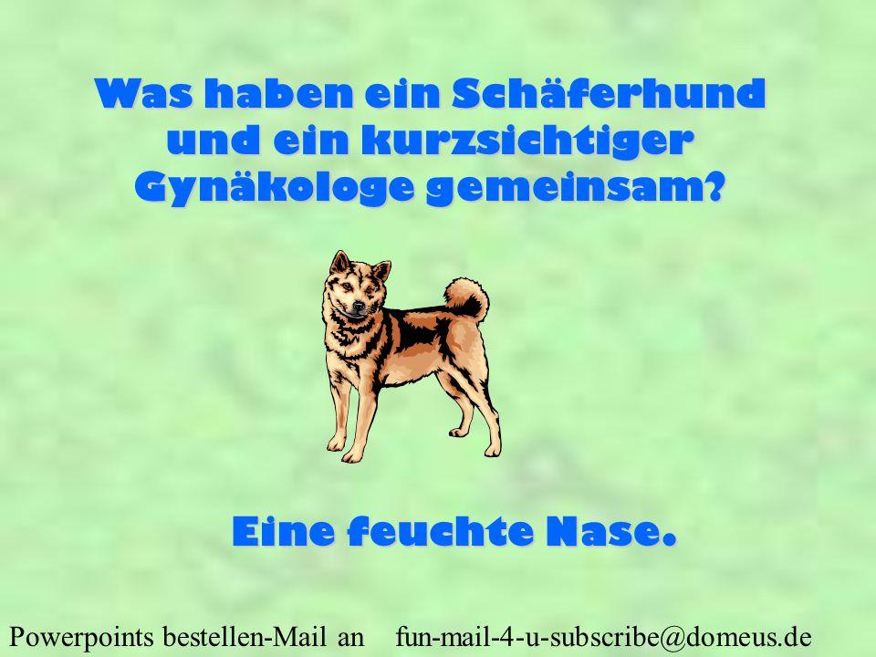 Was haben ein Schäferhund