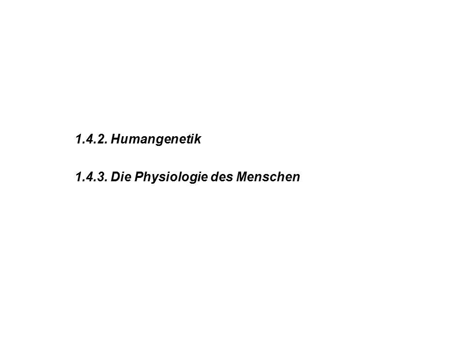 1.4.2. Humangenetik 1.4.3. Die Physiologie des Menschen