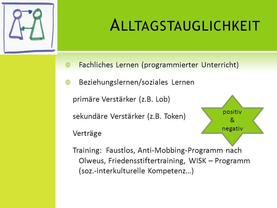 Alltagstauglichkeit Fachliches Lernen (programmierter Unterricht)