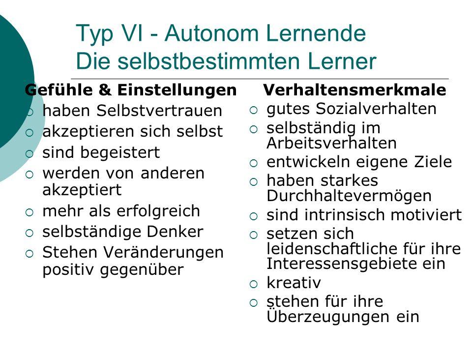 Typ VI - Autonom Lernende Die selbstbestimmten Lerner