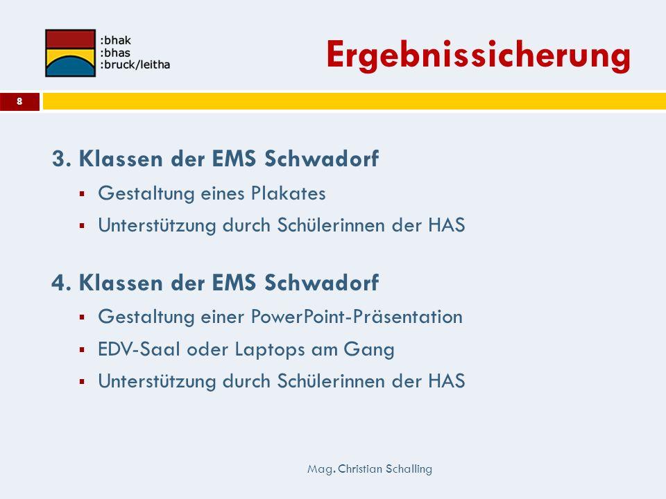 Ergebnissicherung 3. Klassen der EMS Schwadorf