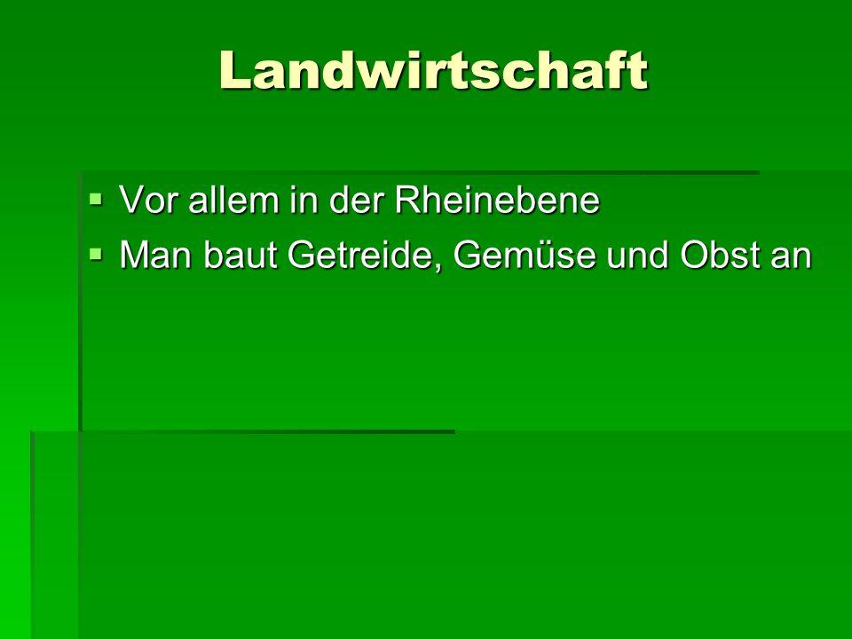 Landwirtschaft Vor allem in der Rheinebene