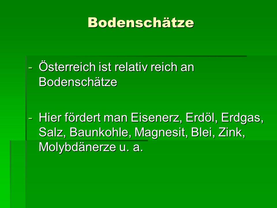 Bodenschätze Österreich ist relativ reich an Bodenschätze
