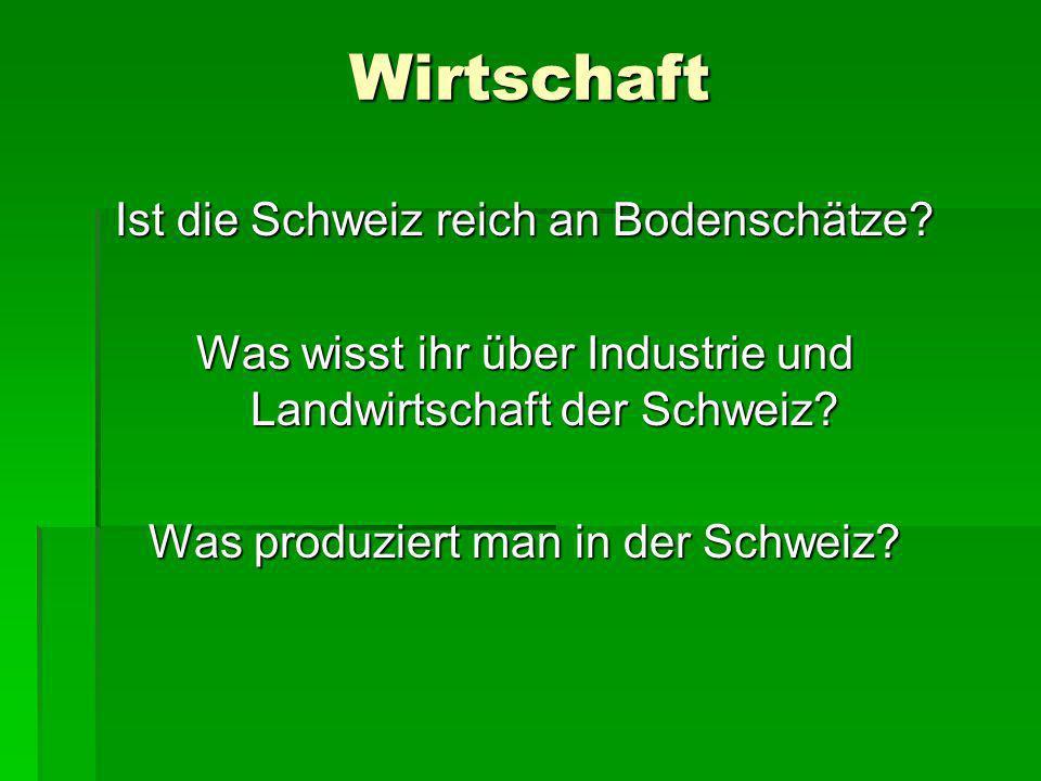 Wirtschaft Ist die Schweiz reich an Bodenschätze