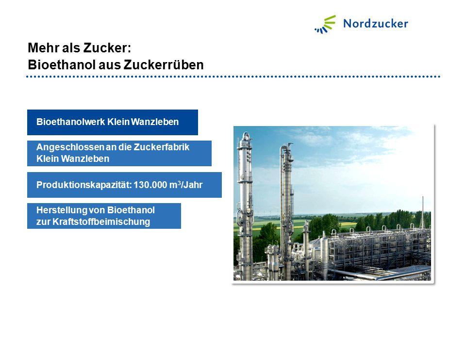 Mehr als Zucker: Bioethanol aus Zuckerrüben