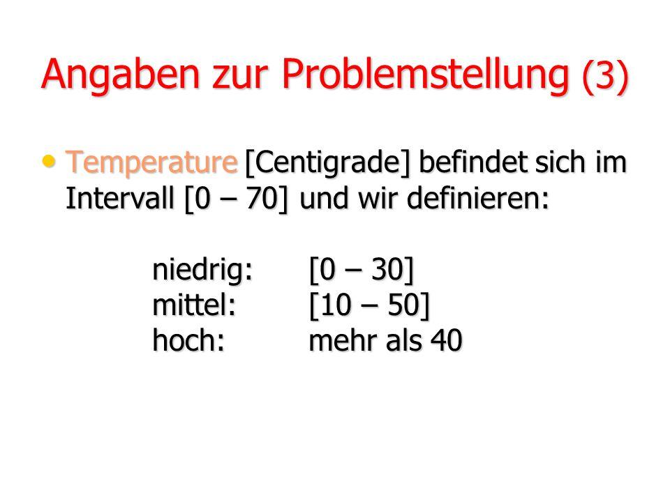 Angaben zur Problemstellung (3)