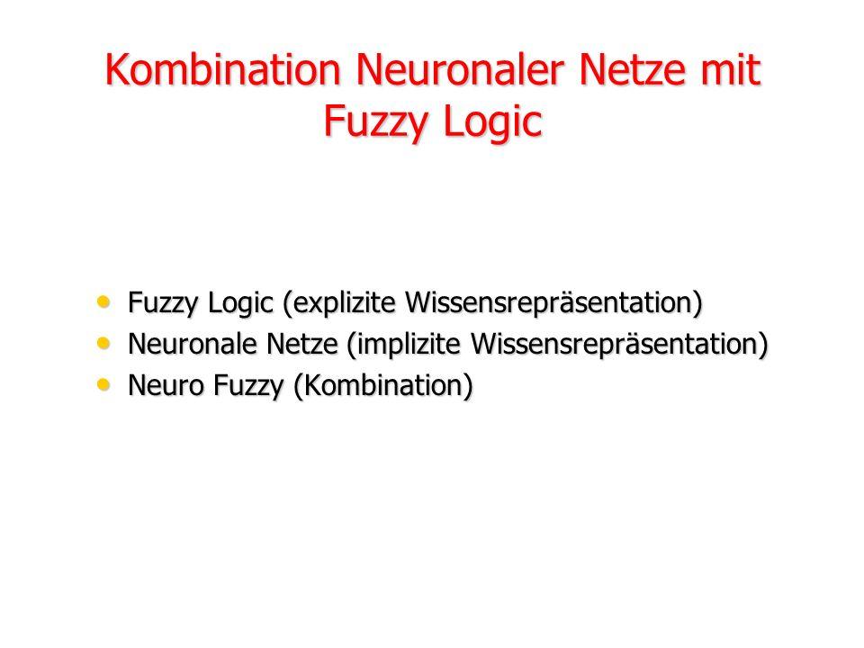 Kombination Neuronaler Netze mit Fuzzy Logic