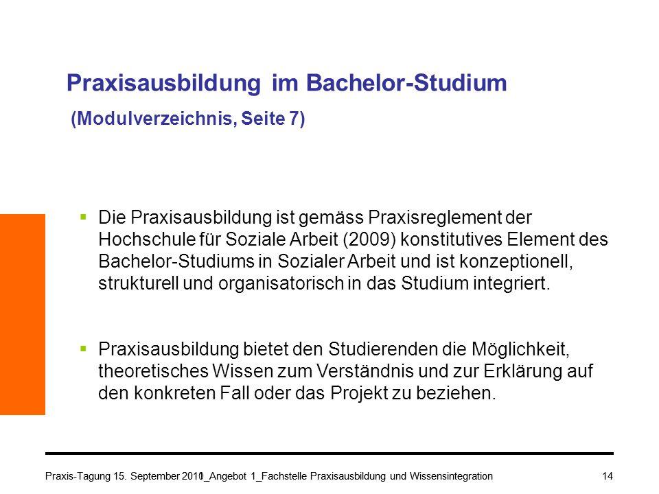 Praxisausbildung im Bachelor-Studium