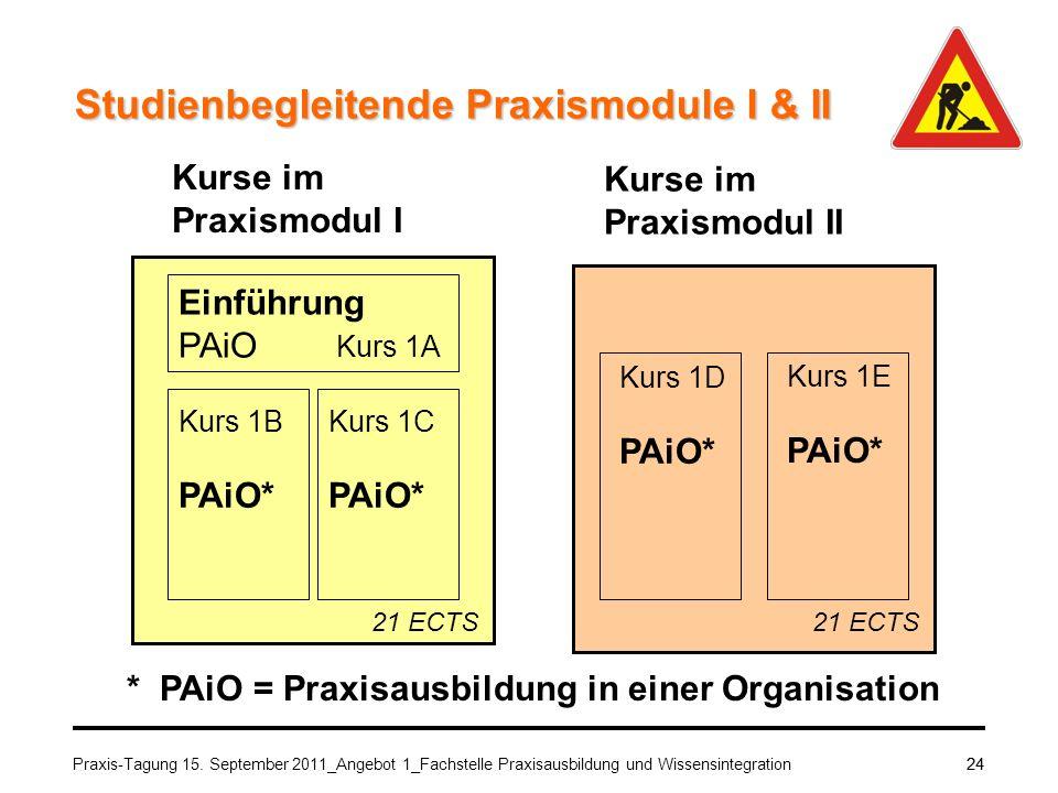 * PAiO = Praxisausbildung in einer Organisation