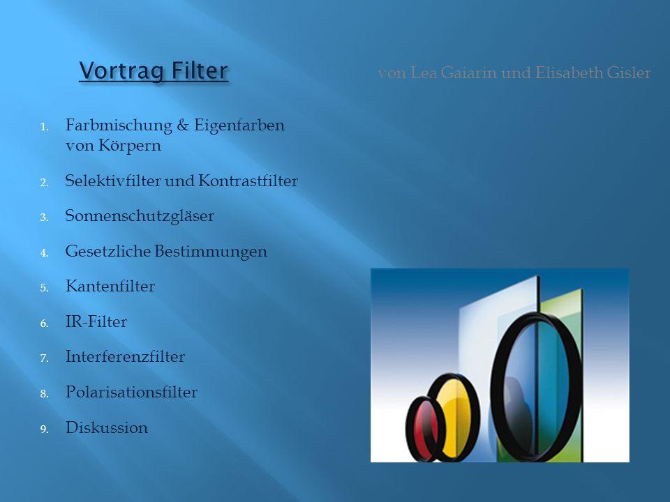 Vortrag Filter von Lea Gaiarin und Elisabeth Gisler