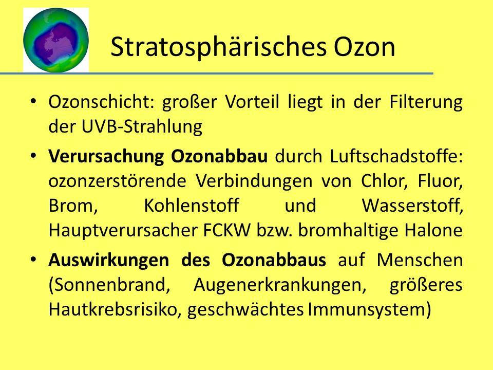 Stratosphärisches Ozon