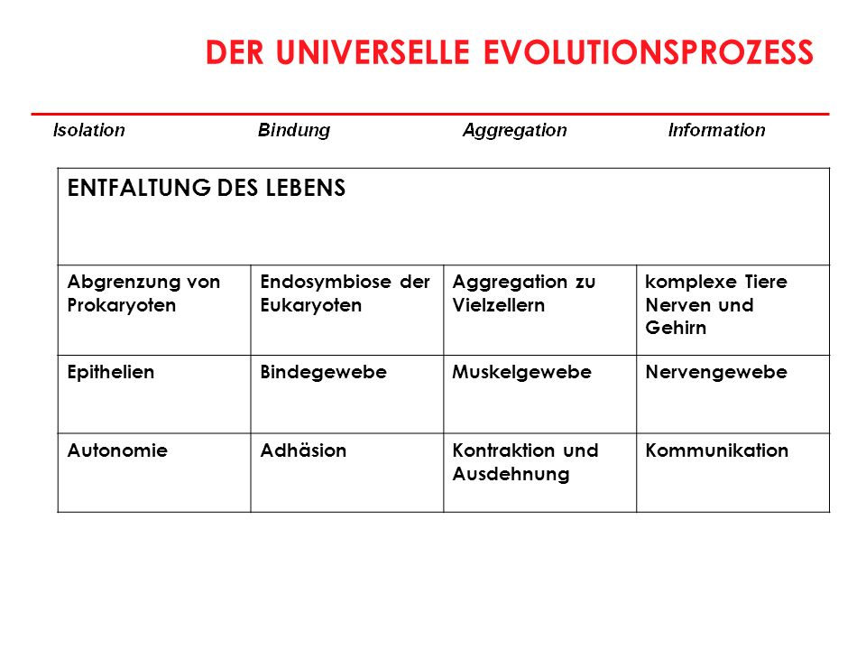 DER UNIVERSELLE EVOLUTIONSPROZESS