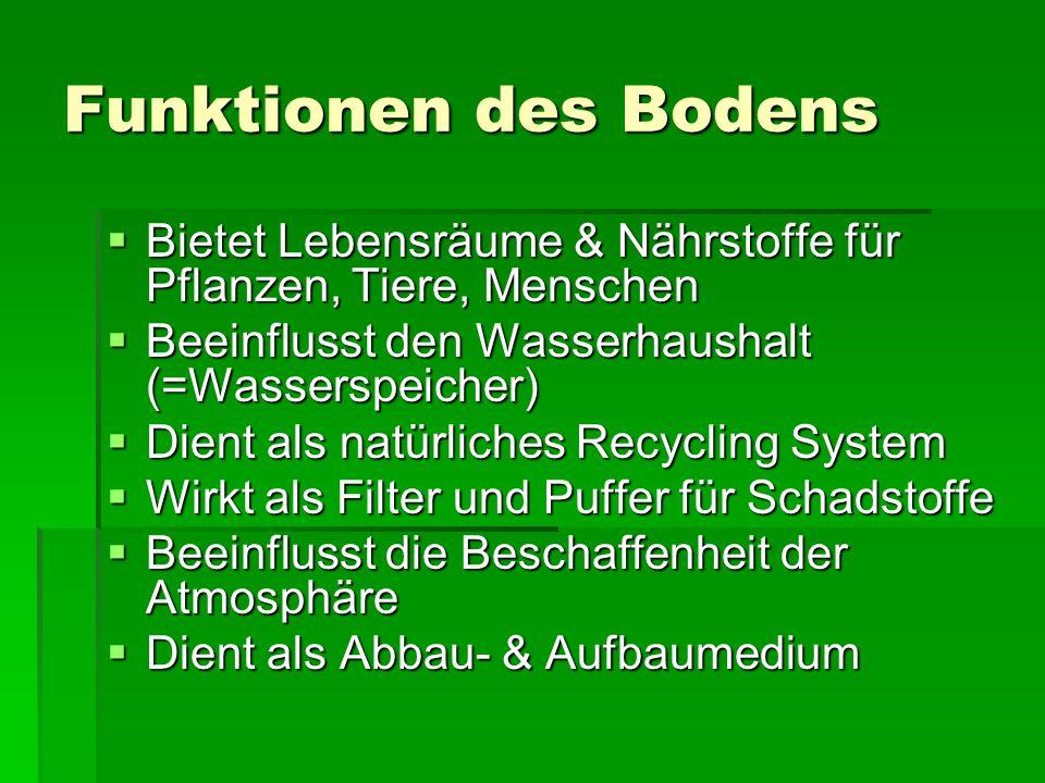 Funktionen des Bodens Bietet Lebensräume & Nährstoffe für Pflanzen, Tiere, Menschen. Beeinflusst den Wasserhaushalt (=Wasserspeicher)