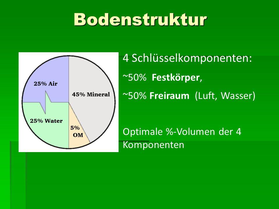 Bodenstruktur 4 Schlüsselkomponenten: ~50% Festkörper,