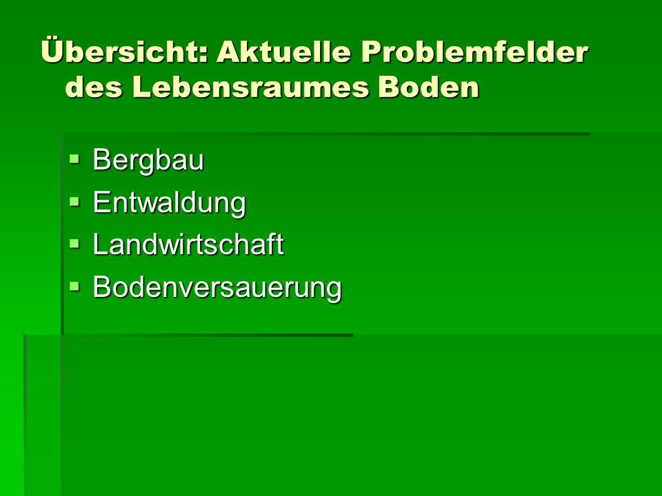 Übersicht: Aktuelle Problemfelder des Lebensraumes Boden