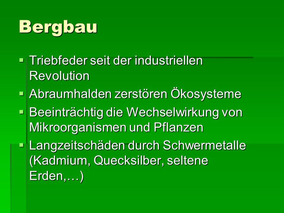Bergbau Triebfeder seit der industriellen Revolution