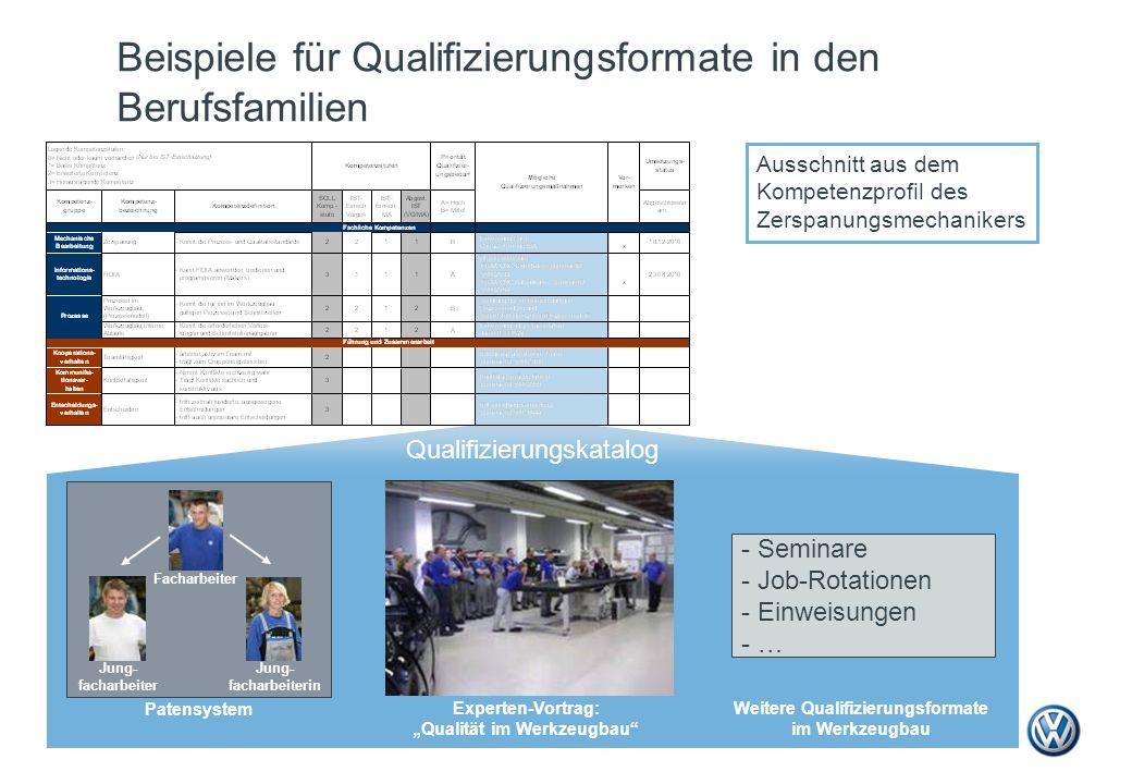 Beispiele für Qualifizierungsformate in den Berufsfamilien