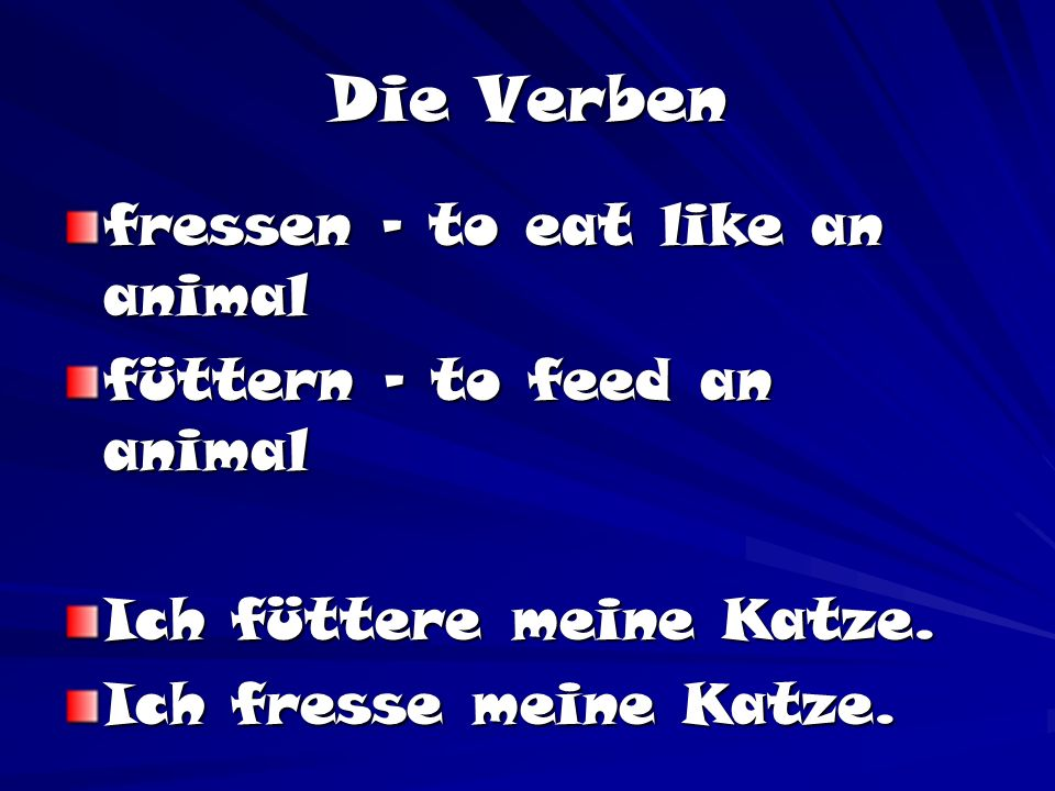 Die Verben fressen – to eat like an animal füttern – to feed an animal