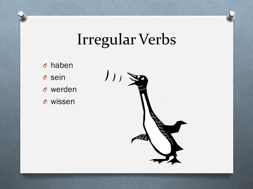 Irregular Verbs haben sein werden wissen
