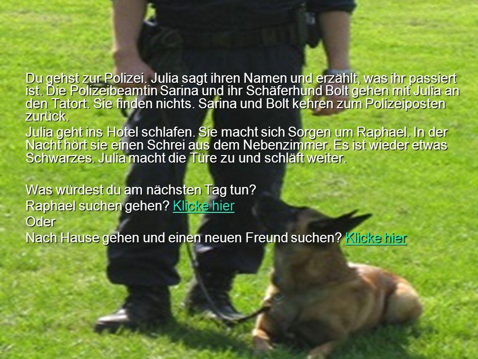 Du gehst zur Polizei. Julia sagt ihren Namen und erzählt, was ihr passiert ist. Die Polizeibeamtin Sarina und ihr Schäferhund Bolt gehen mit Julia an den Tatort. Sie finden nichts. Sarina und Bolt kehren zum Polizeiposten zurück.