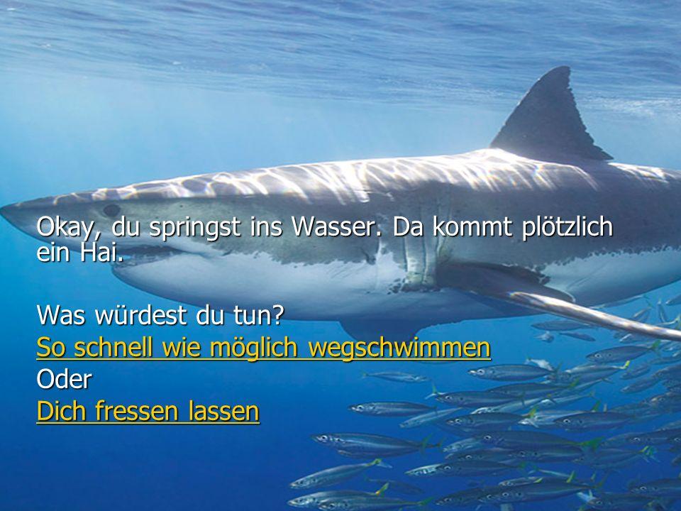 Okay, du springst ins Wasser. Da kommt plötzlich ein Hai.