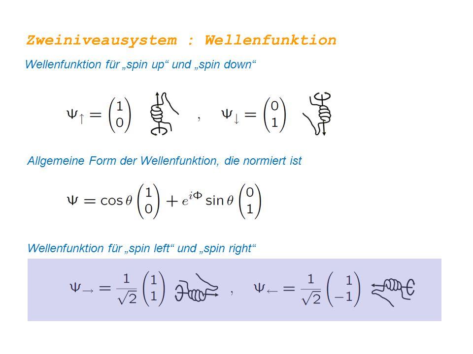Zweiniveausystem : Wellenfunktion