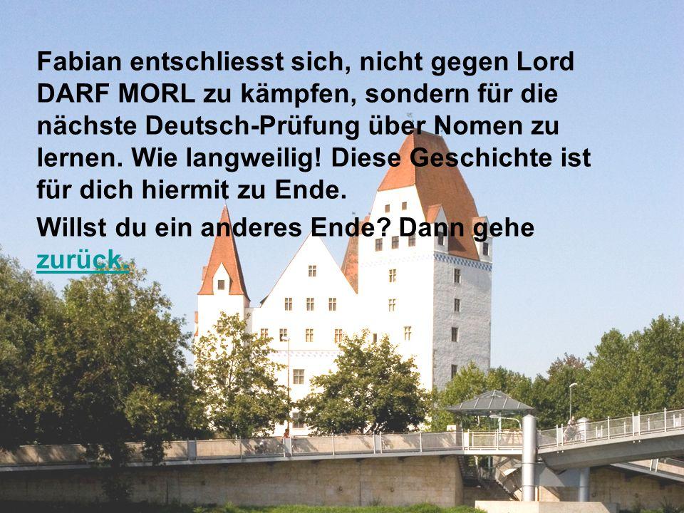 Fabian entschliesst sich, nicht gegen Lord DARF MORL zu kämpfen, sondern für die nächste Deutsch-Prüfung über Nomen zu lernen. Wie langweilig! Diese Geschichte ist für dich hiermit zu Ende.
