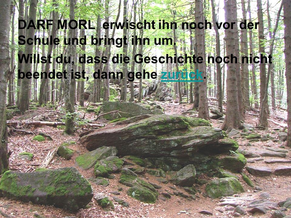 DARF MORL erwischt ihn noch vor der Schule und bringt ihn um.