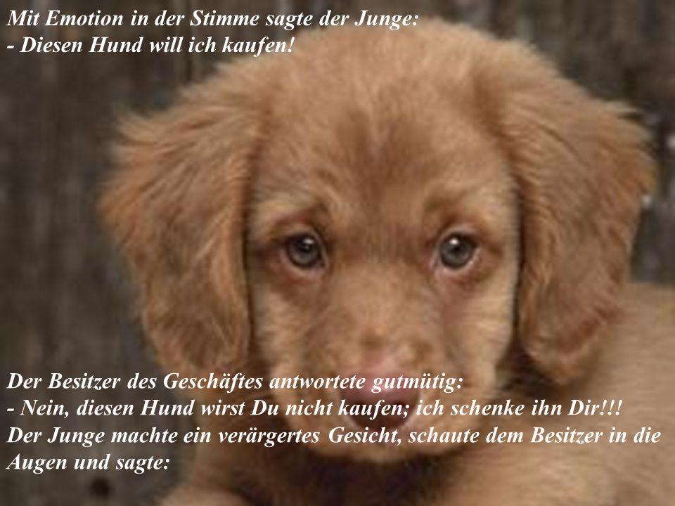 Mit Emotion in der Stimme sagte der Junge: - Diesen Hund will ich kaufen!